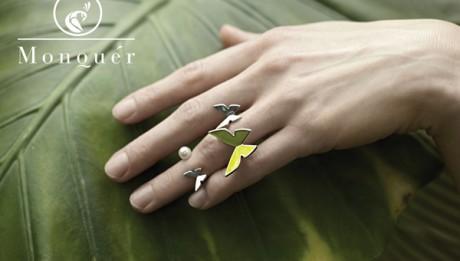 papillon_monquer