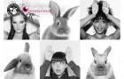 The Body Shop призывают запретить тестирование на животных