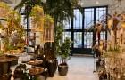 В квартале Ноблесснера открывается большой интерьерный салонShishi