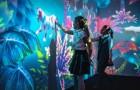 В Таллинне открывается первый игровой мир будущего Future Live нового поколения