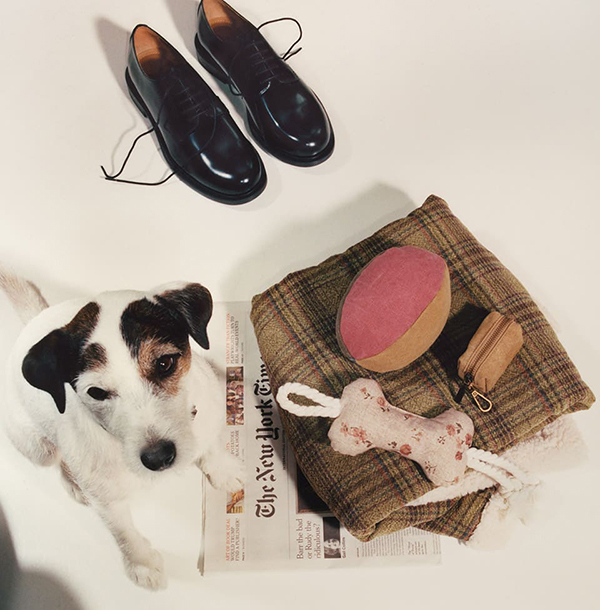 Zara Home Pets Collection (6)