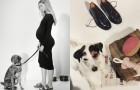 Zara Home выпустили стильную коллекцию для домашних питомцев